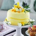 homes-gardens-easter-cake-recipe