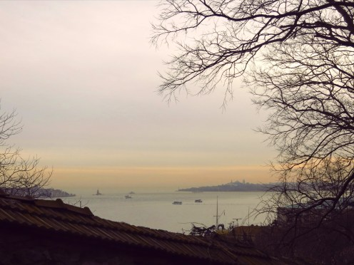 View to the Golden Horn from Yıldız Parkı