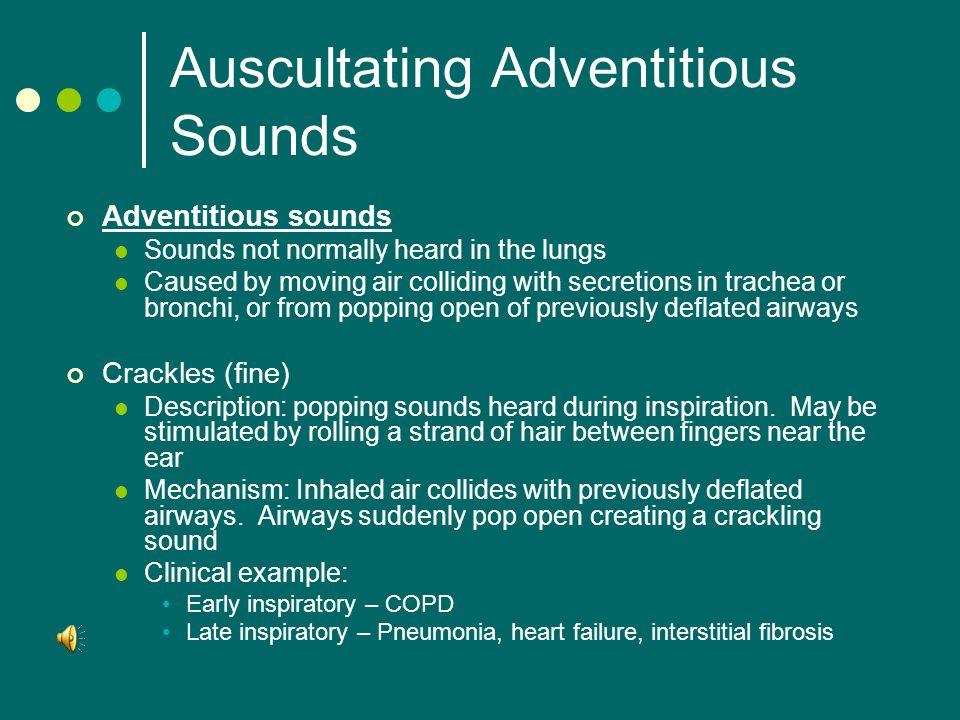 Fluid Lungs Sound