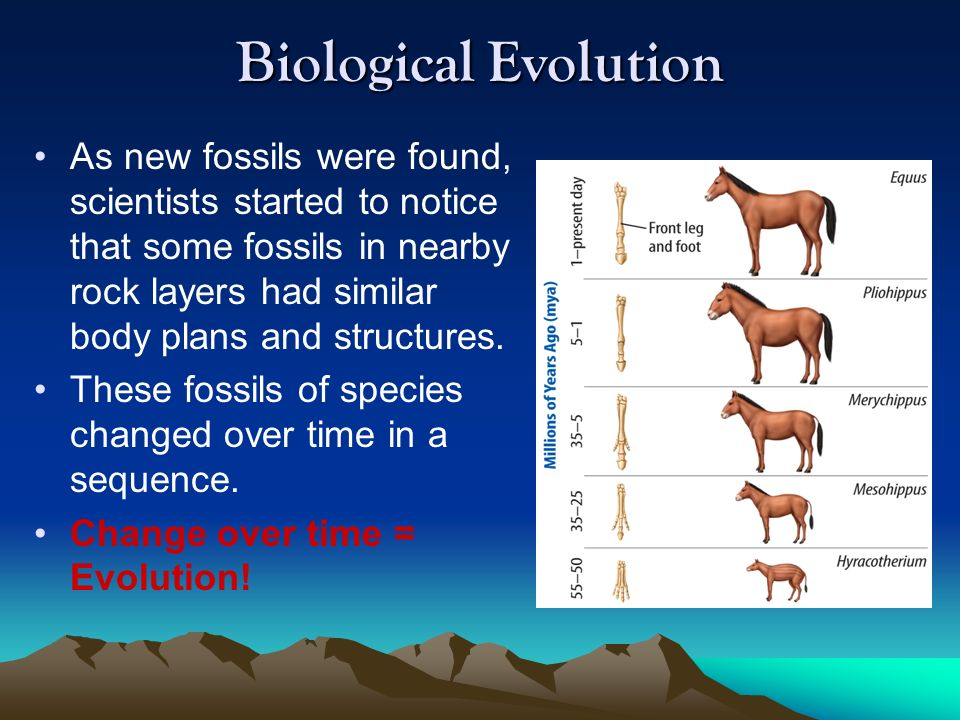 Changes Over Time Biology