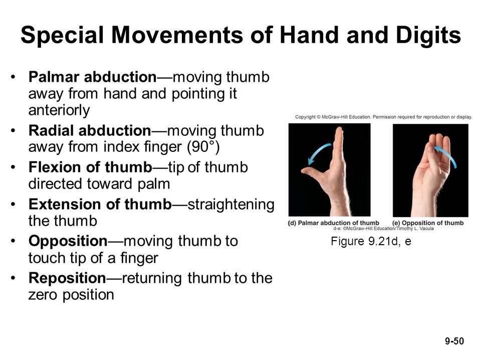 Pronation Vs Supination Of Hand