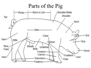 Breeds of Swine McAllen FFA Mr Leal  ppt video online
