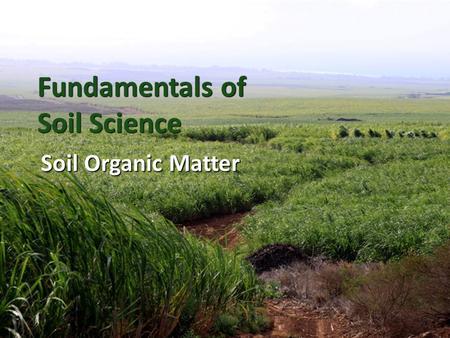 Ch 3 Soil Organic Matter continued. - ppt video online ...