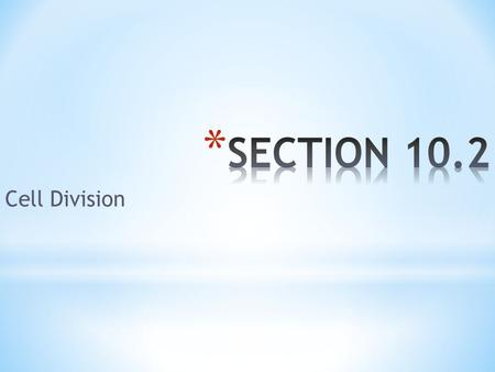 Section 10 2 Cell Division Answer Key Best Key In The Word 2018