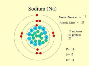 11 12 Sodium Atomic number = Mass Number = pp n protons