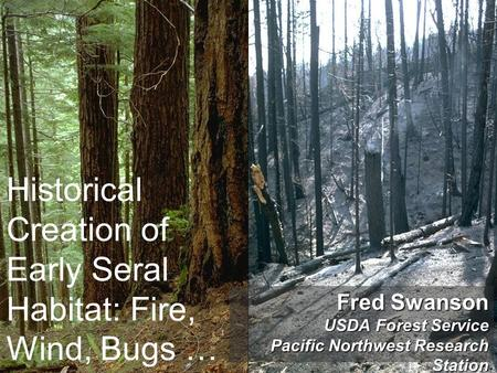 Habitat Use and Ecology of the Northern Flying Squirrel ...