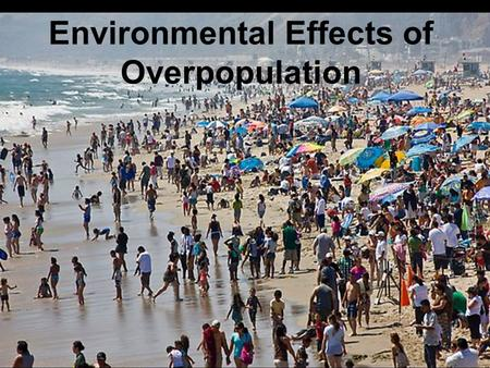 Image result for overpopulation effect on the environment images