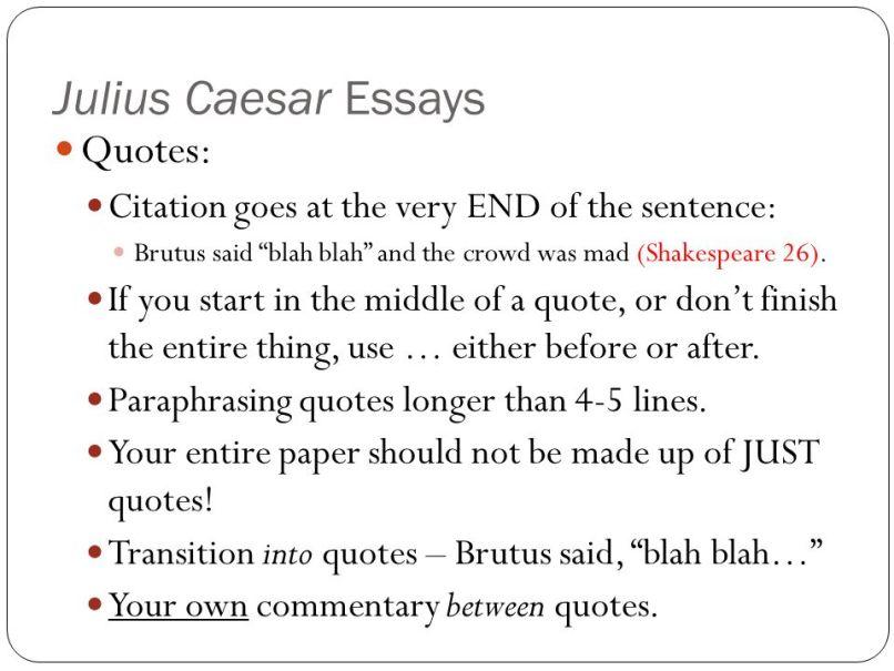 Julius Caesar Igcse Essay Questions Poemdocor