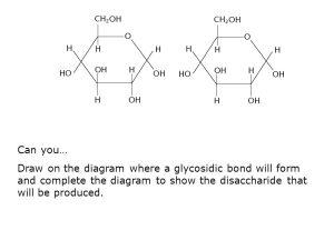 Monosaccharides (CH2O)n If n=3, triose (glyceraldehyde