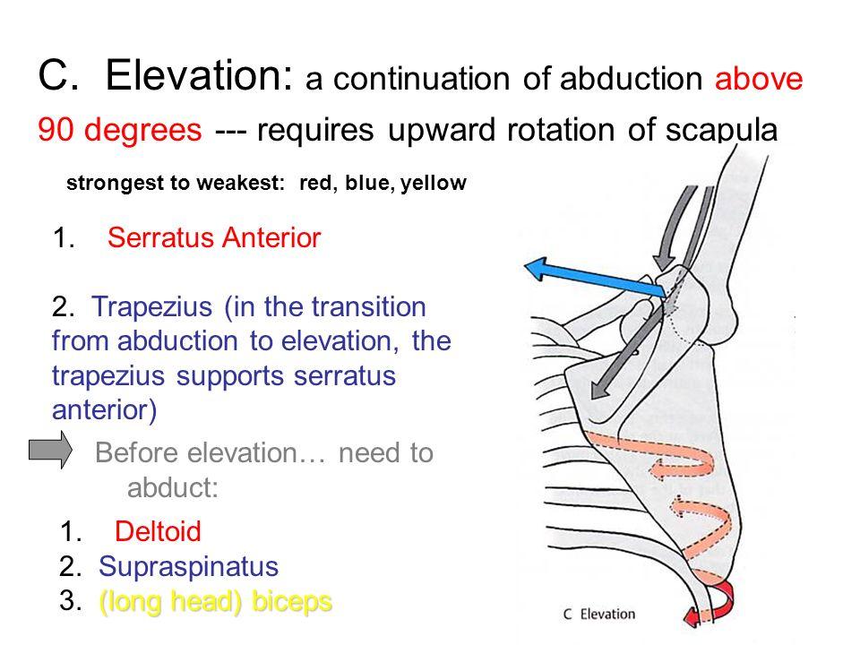 90 Degrees Shoulder Elevation Degrees Forward 90 Or Abduction