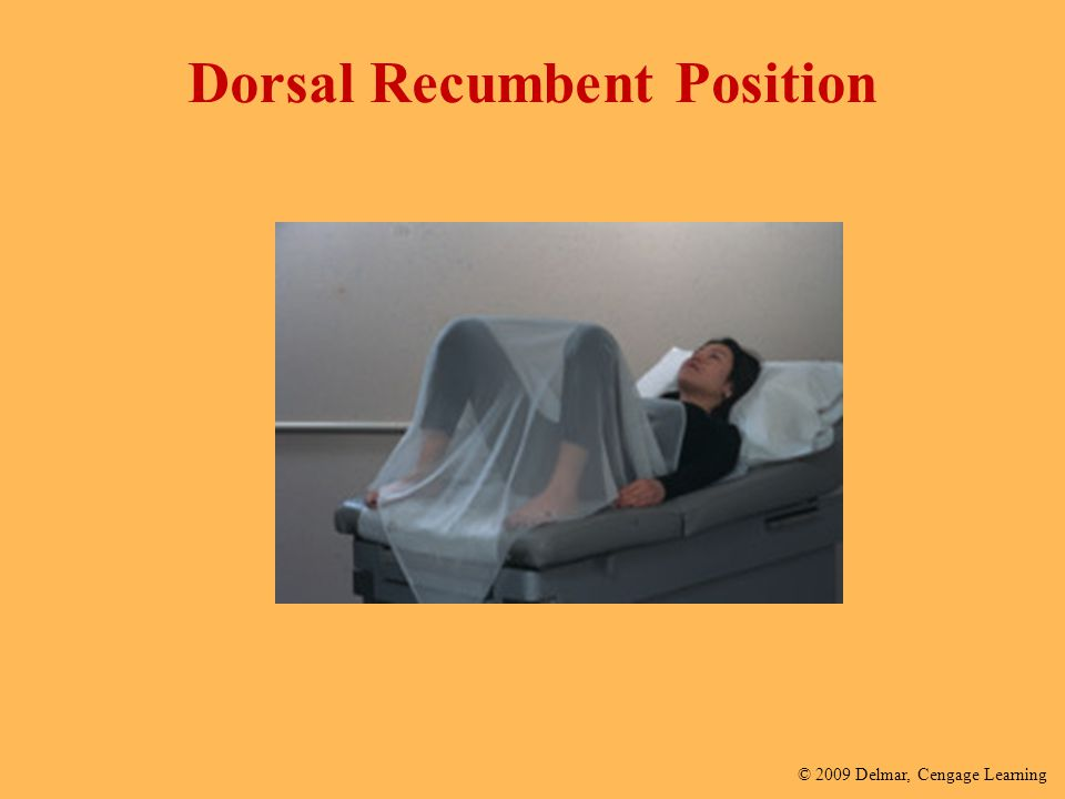 Examination And Recumbent Draping Positioning Dorsal
