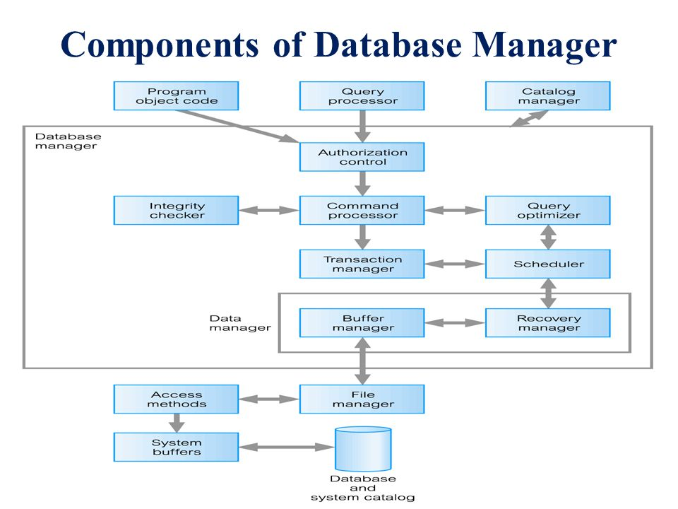 Database Security Dbms