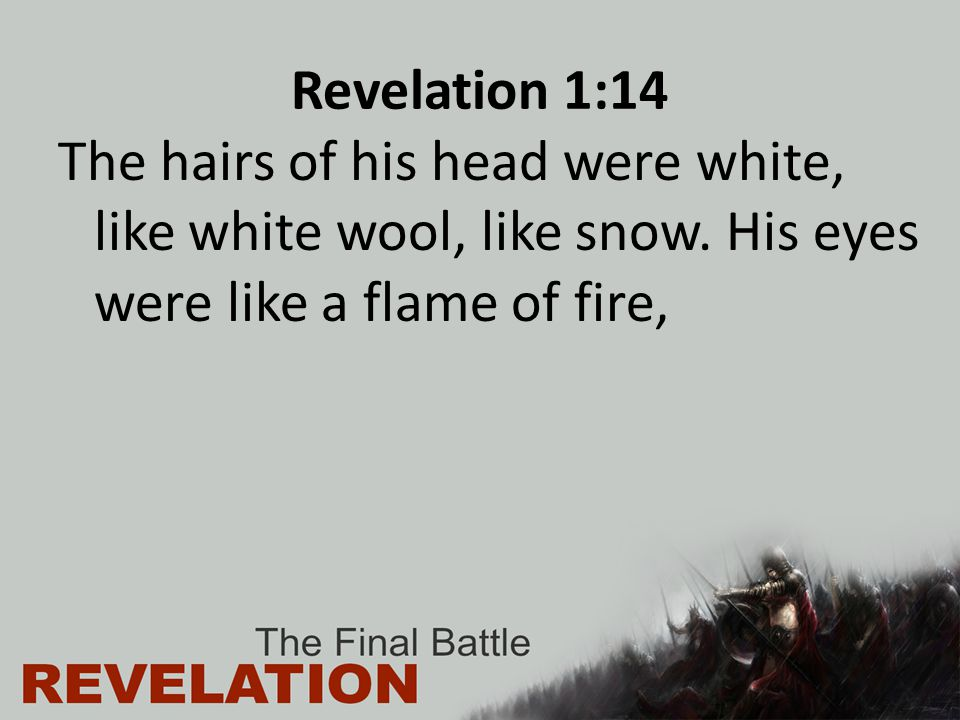 Were And Hairs His White His His Head Were And Eyes White Wool Snow Flam