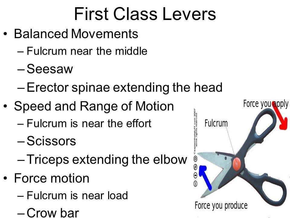 Wheelbarrow Second Class Lever