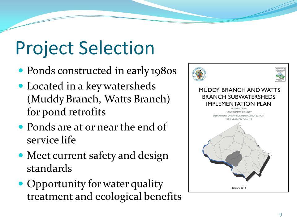 Eliza Pond Design Guidelines