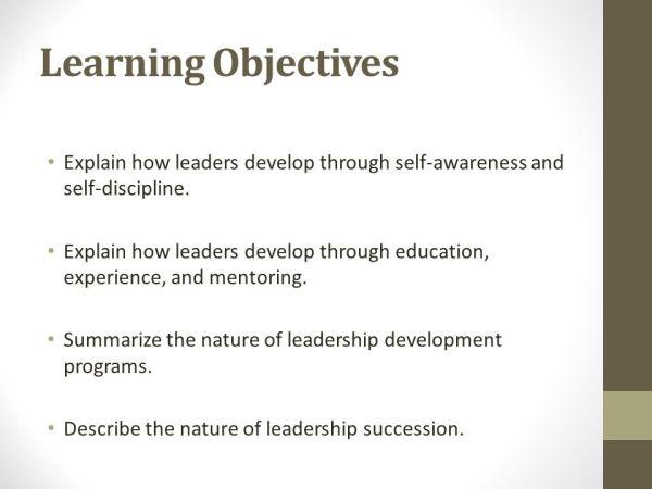Chapter Fifteen Leadership Development & Succession - ppt ...