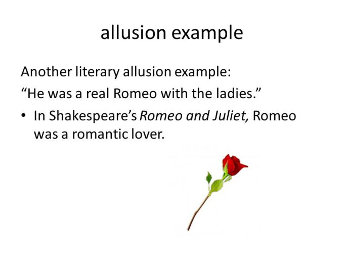 Allusion Examples In Romeo And Juliet Image Collections Example