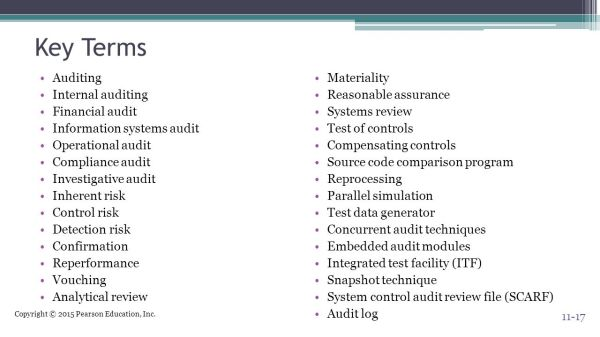 Auditing Computer-Based Information Systems - ppt video ...