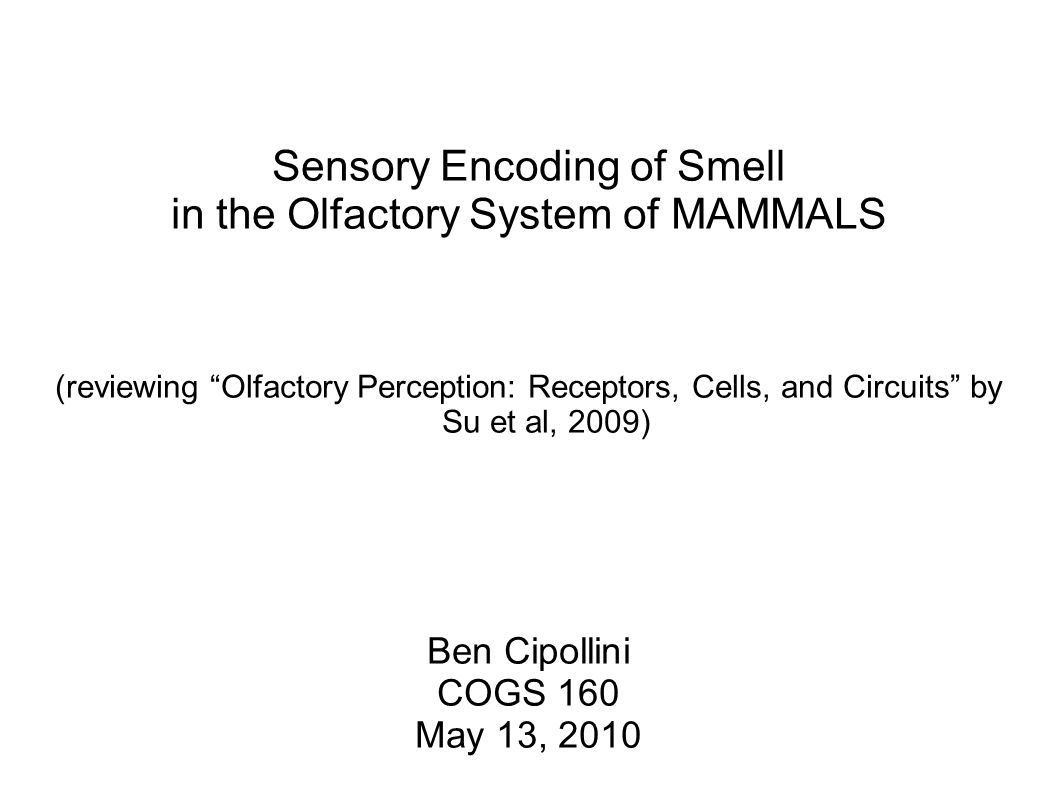 Sensory Encoding Of Smell In The Olfactory System Of Mammals
