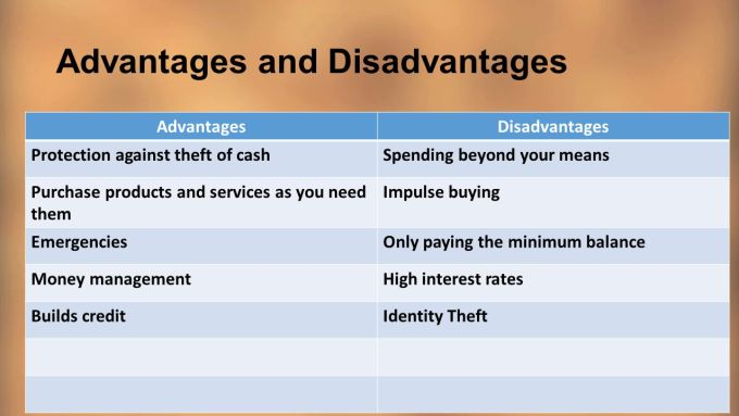 Letter Of Credit Disadvantages Advantages And Cards