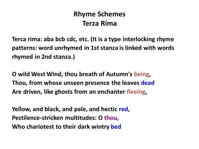 Words That Rhyme With Wild Kidz Activities