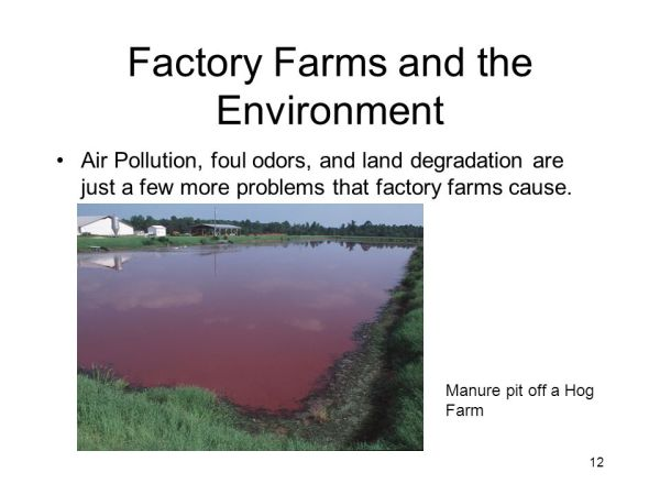 Livestock Production and Climate Change - ppt video online ...