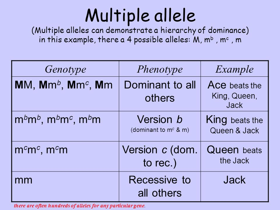 Multiple Alleles Example Of Hair Color Chart