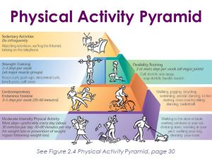 Muscular Strength and Endurance  ppt video online download