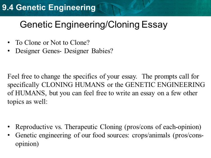 persuasive essay on human genetic engineering docoments ojazlink cloning humans essay