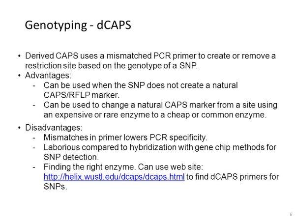 PCR-Based Genotyping Methods - ppt download