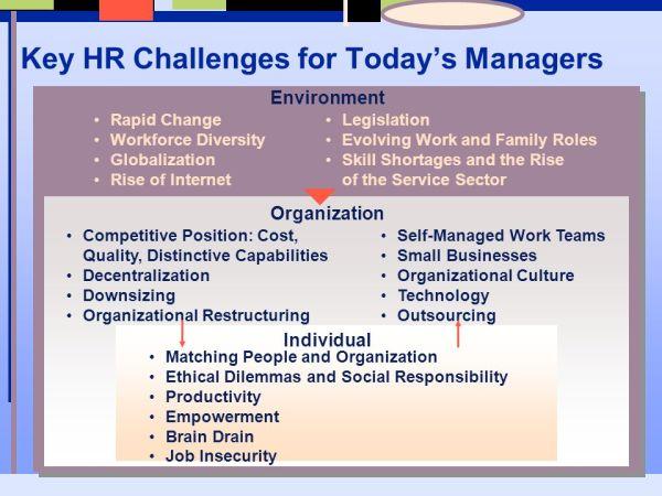 Meeting Present and Emerging Strategic Human Resource ...