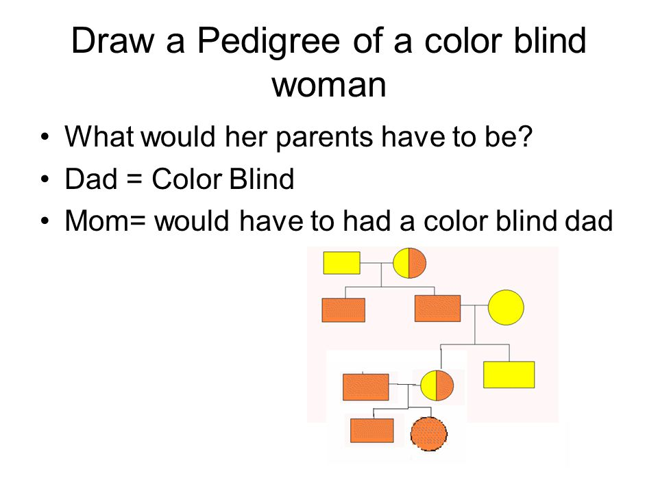Color Blindness Pedigree Chart Simple
