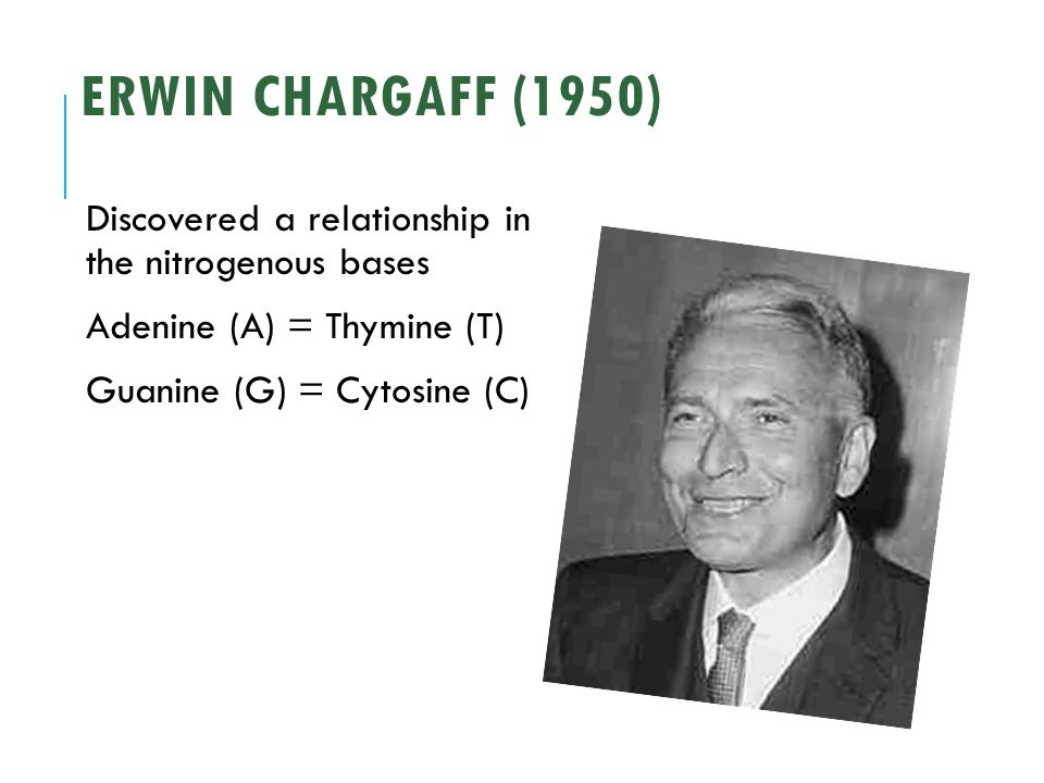 Erwin Chargaff Contributions