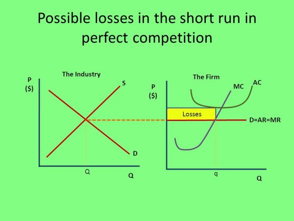 Perfect Competition Section ppt download