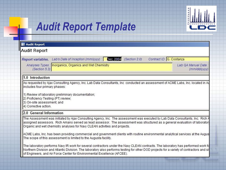 Information Audit Template Security