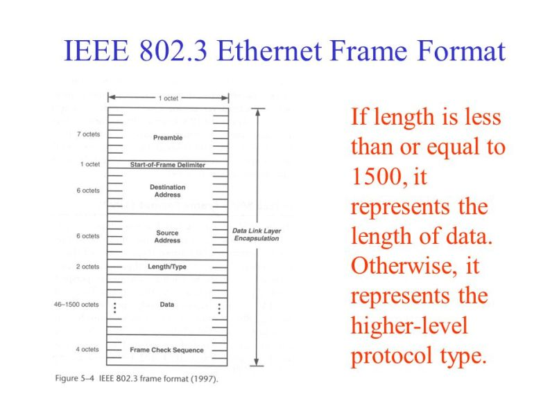 Beautiful Which Fields Are Contained Within An Ieee Ethernet Frame ...