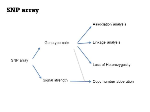 Gene expression array and SNP array - ppt download