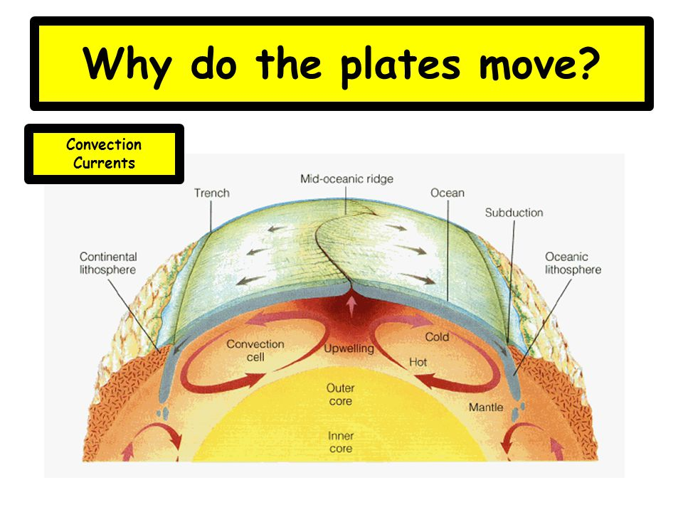Plates How Mp Move