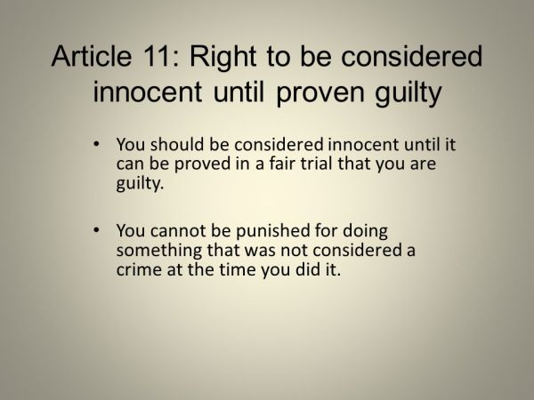 Article 1: Right to equality - ppt video online download