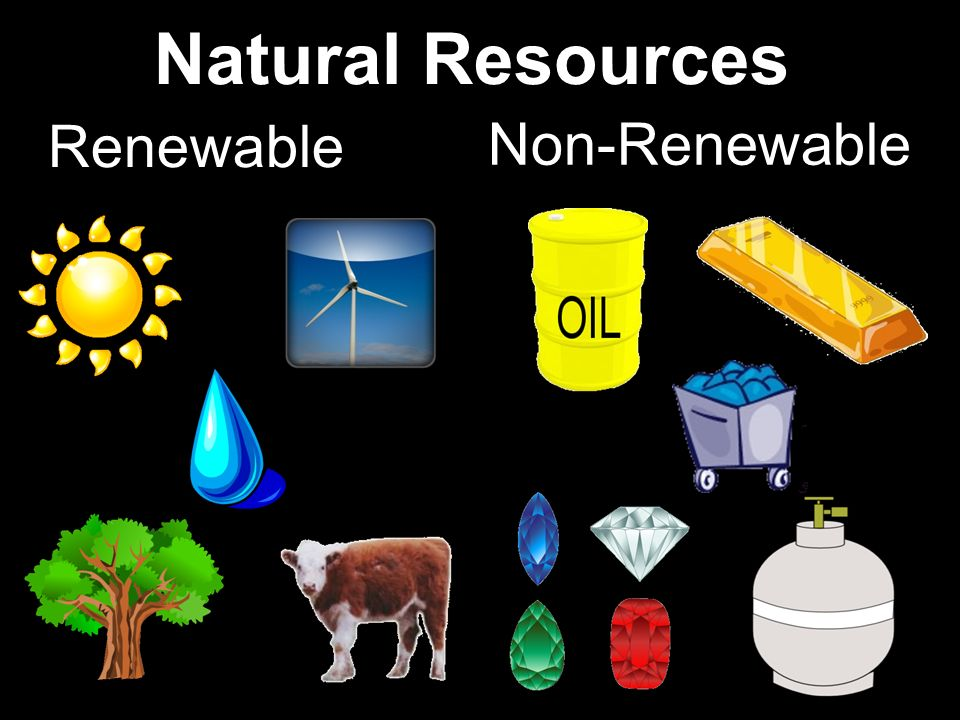 Resources Renewable List Examples