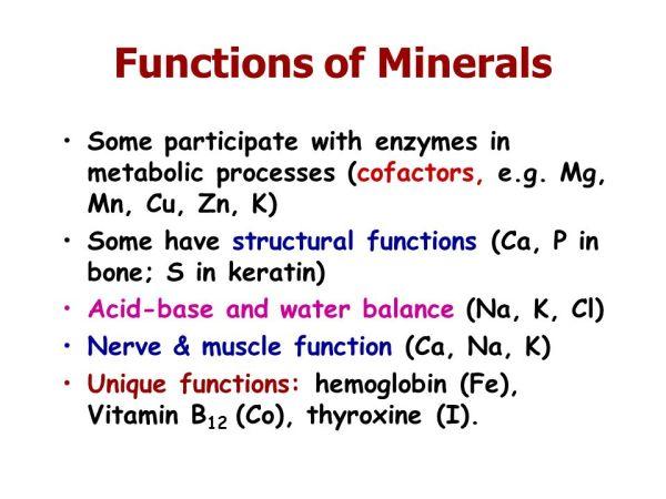 Mineral metabolism. - ppt video online download