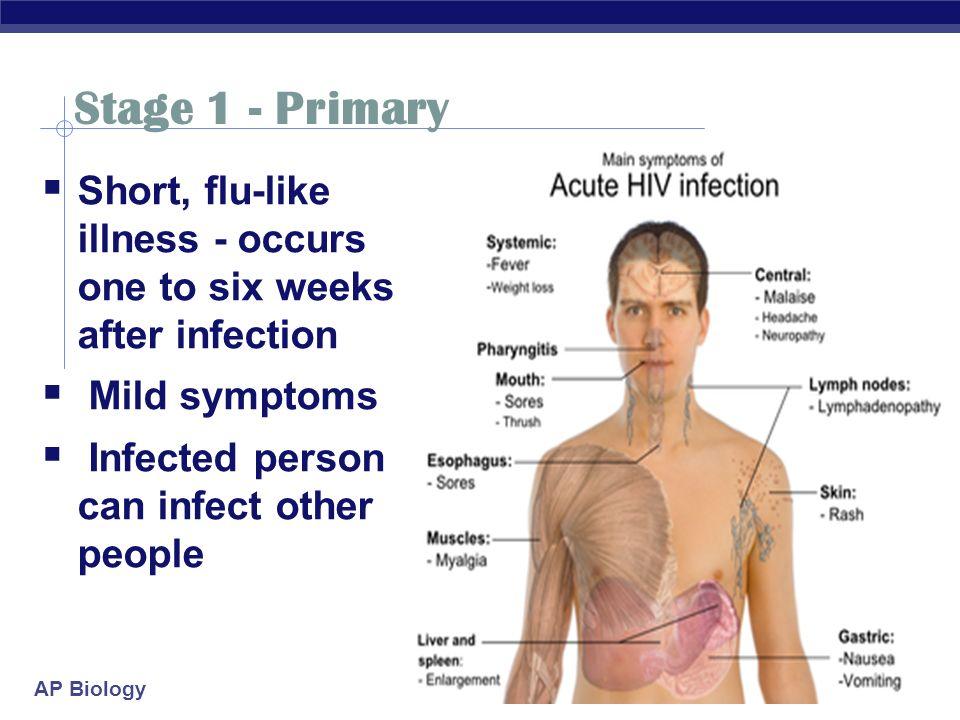 Virus System Immune Fighting