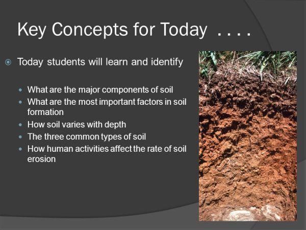 Earth Science: 5.2 Soil SOIL. - ppt video online download
