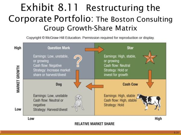 Chapter 8 Corporate Strategy: Vertical Integration and ...