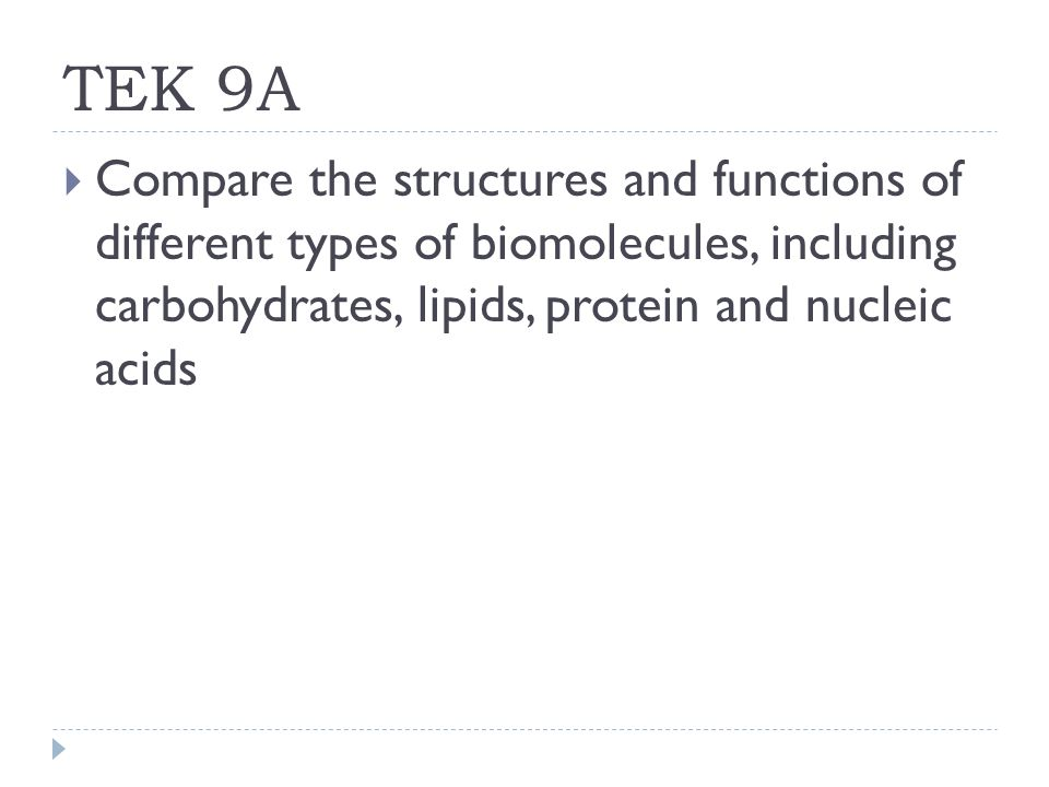 Do And Carbohydrates Differ Proteins Lipids How Structure
