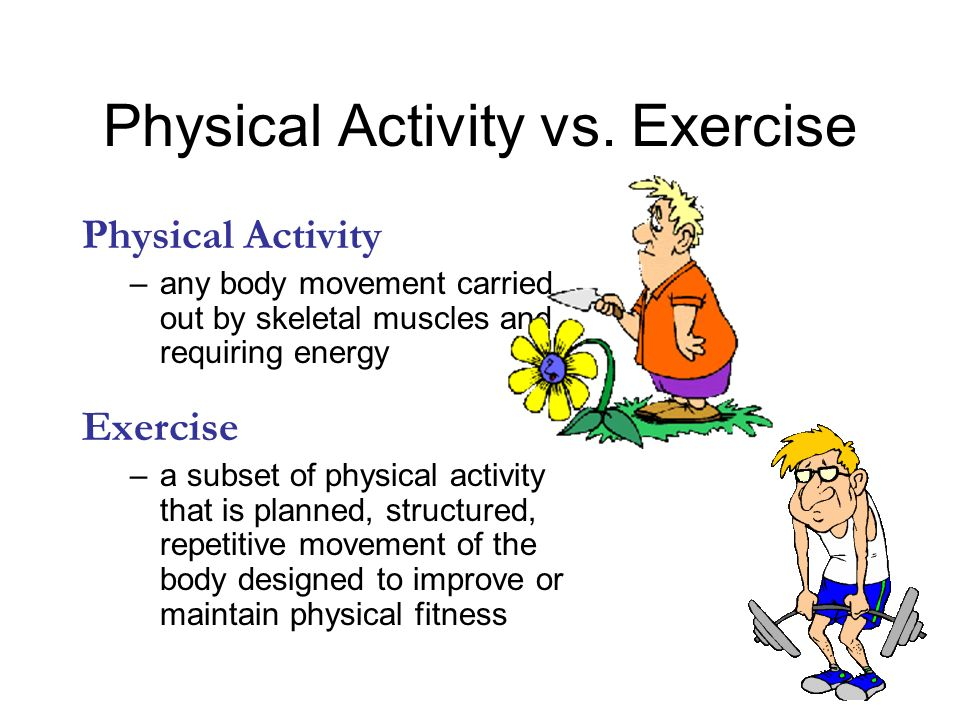 Activity Physical Components