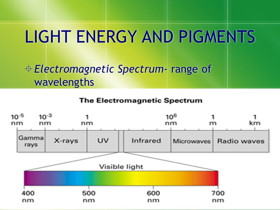Draw And Label Electromagnetic Spectrum