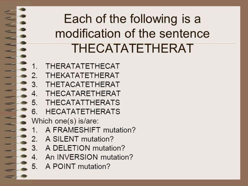 Frameshift Mutation Sentence | Frameswalls.org