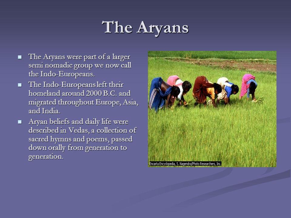 Social Indus Civilization Valley