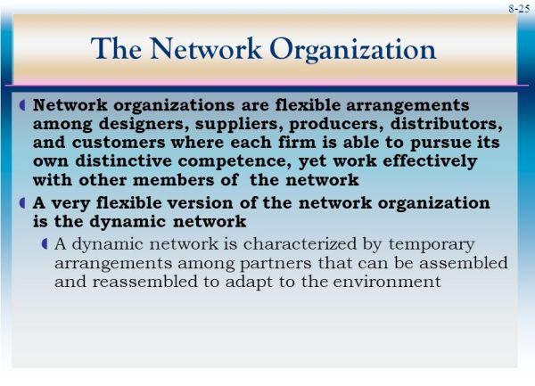 Organization Structure - ppt video online download